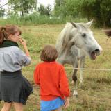 2012-09-01_10-27-10_171_Pfadis