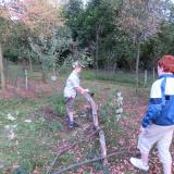 2012-09-01_19-28-32_224_Pfadis